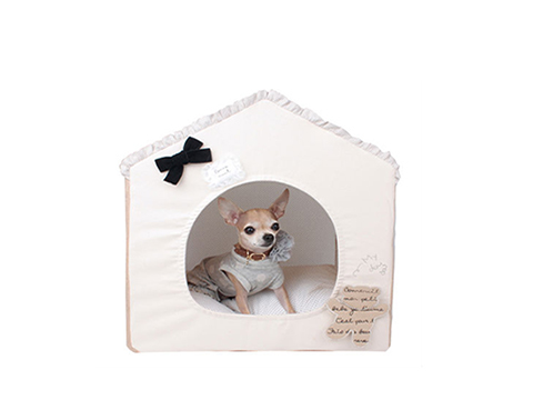 pet products - dogs
